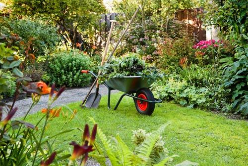 Garden-Maintaining-services